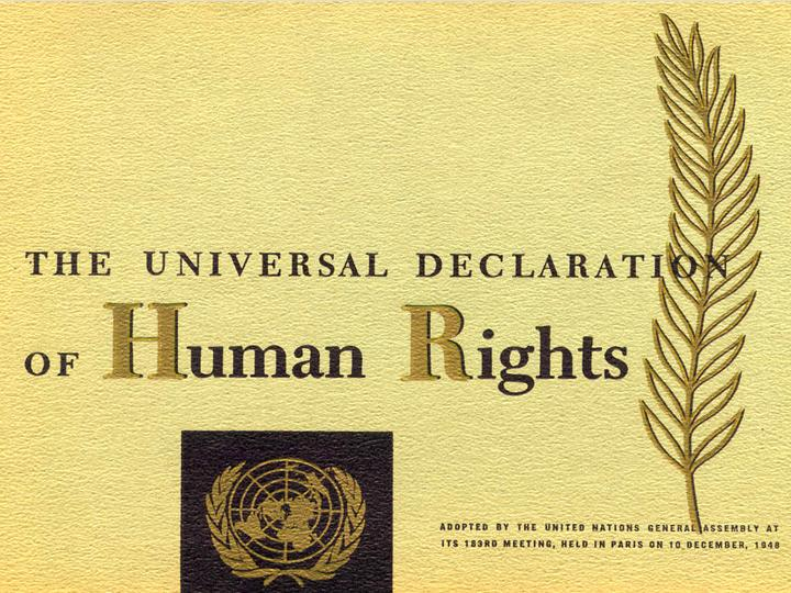 TO THE UNIVERSAL DECLARATION OF HUMAN RIGHTS